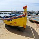 Colourful fishing boat Ria Formosa
