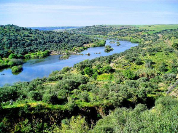 Guadiana Vallley
