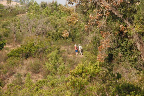 Walking green hills West Algarve