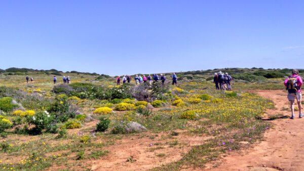 Lagoa: The West Algarve walking tours