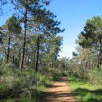 Monte Gordo is a small beach resort, in the East Algarve,