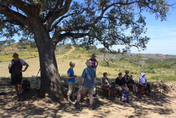 Walking group Resting under a cork tree in Algarve Portugal