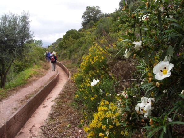 Silves West Algarve, Walking