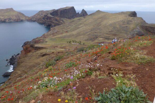 Madeira, Ponta Sao Lourenço
